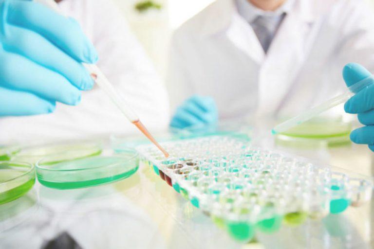 Биохимические исследования крови